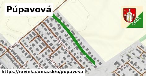 ilustrácia k Púpavová, Rovinka - 343m