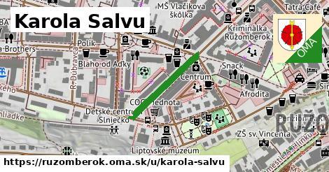 ilustračný obrázok k Karola Salvu, Ružomberok