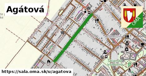 ilustrácia k Agátová, Šaľa - 626m