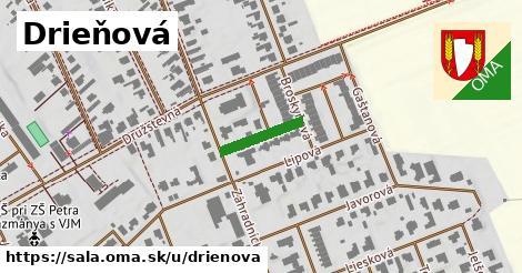 ilustrácia k Drieňová, Šaľa - 123m