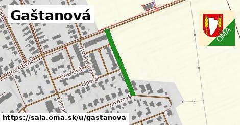 ilustrácia k Gaštanová, Šaľa - 222m