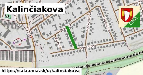 ilustrácia k Kalinčiakova, Šaľa - 128m
