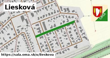 ilustrácia k Liesková, Šaľa - 284m
