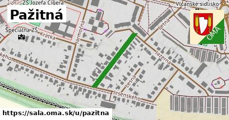 ilustrácia k Pažitná, Šaľa - 220m