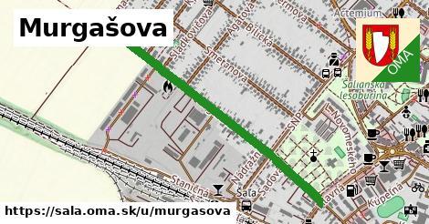 Murgašova, Šaľa