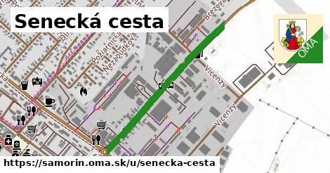 ilustrácia k Senecká cesta, Šamorín - 0,79km
