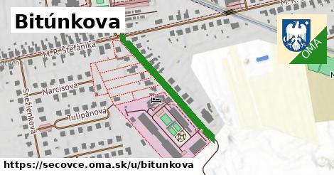 ilustrácia k Bitúnkova, Sečovce - 303m