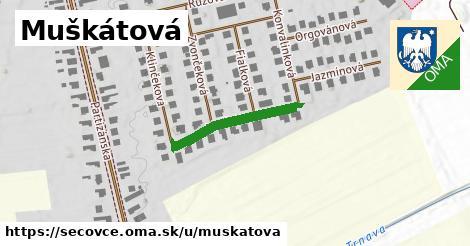 ilustrácia k Muškátová, Sečovce - 219m