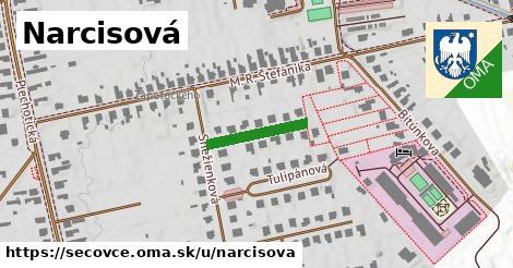 ilustrácia k Narcisová, Sečovce - 149m