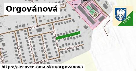ilustrácia k Orgovánová, Sečovce - 134m