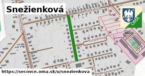 ilustrácia k Snežienkova, Sečovce - 238m