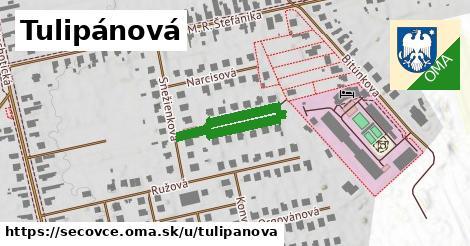 ilustrácia k Tulipánová, Sečovce - 311m