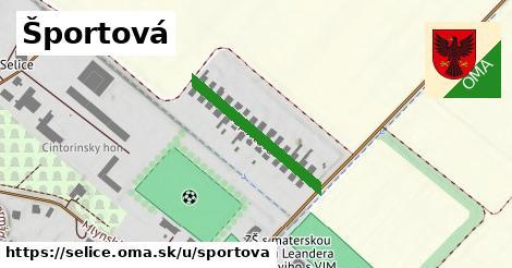 ilustrácia k Športová, Selice - 245m