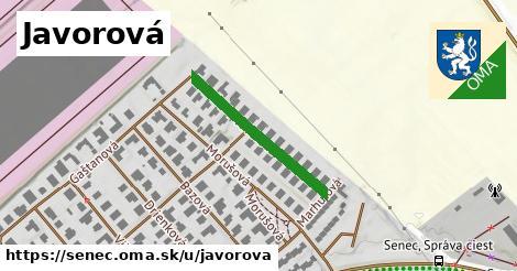 ilustrácia k Javorová, Senec - 257m