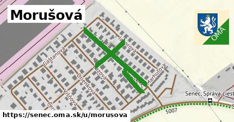 ilustrácia k Morušová, Senec - 356m