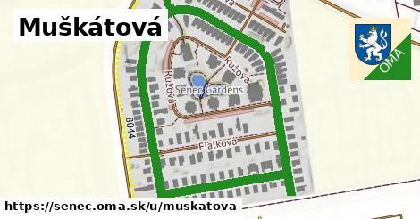 ilustrácia k Muškátová, Senec - 1,13km