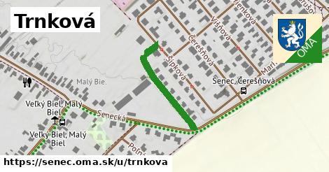 ilustrácia k Trnková, Senec - 253m