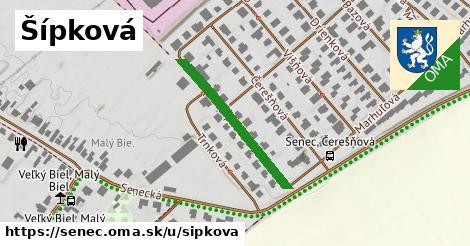 ilustrácia k Šípková, Senec - 333m