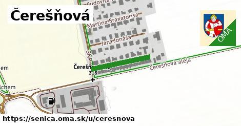 ilustrácia k Čerešňová, Senica - 185m