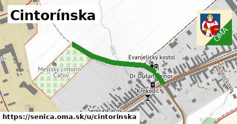 ilustračný obrázok k Cintorínska, Senica