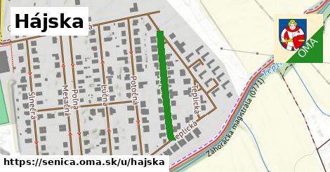 ilustrácia k Hájska, Senica - 238m