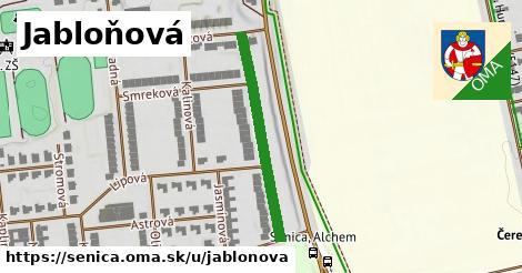 ilustrácia k Jabloňová, Senica - 301m