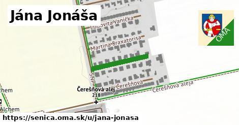 ilustračný obrázok k Jána Jonáša, Senica