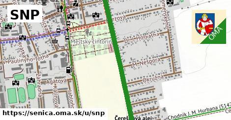 ilustrácia k SNP, Senica - 1,40km
