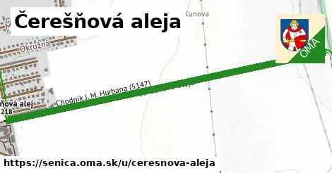 ilustrácia k Čerešňová aleja, Senica - 1,47km