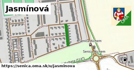 ilustrácia k Jasmínová, Senica - 124m