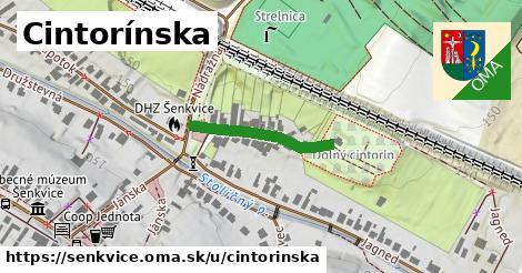 ilustrácia k Cintorínska, Šenkvice - 210m