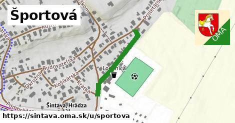 ilustračný obrázok k Športová, Šintava