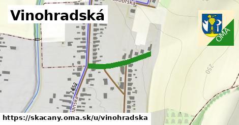 ilustrácia k Vinohradská, Skačany - 200m