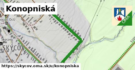 ilustrácia k Konopniská, Skýcov - 416m