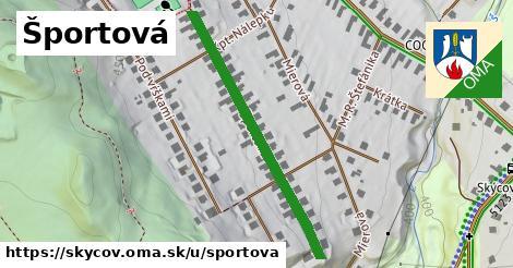 ilustrácia k Športová, Skýcov - 394m