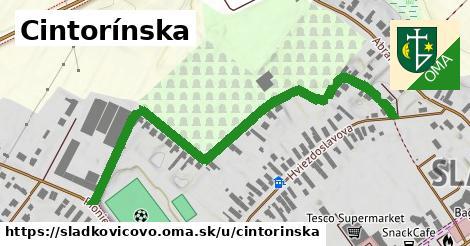 ilustrácia k Cintorínska, Sládkovičovo - 0,70km