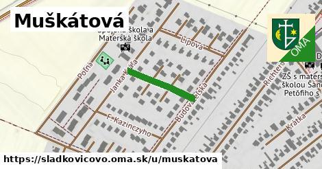 ilustrácia k Muškátová, Sládkovičovo - 169m
