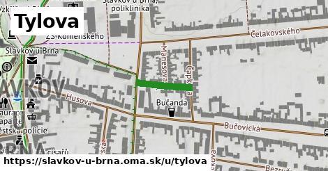 ilustrácia k Tylova, Slavkov u Brna - 125m