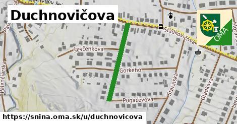 ilustrácia k Duchnovičova, Snina - 246m