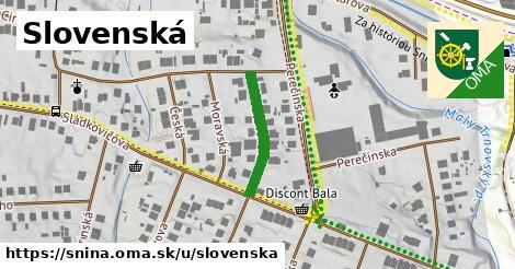 ilustrácia k Slovenská, Snina - 186m