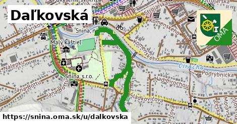 Daľkovská, Snina