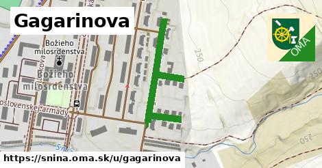Gagarinova, Snina