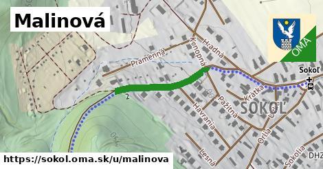 ilustrácia k Malinová, Sokoľ - 223m