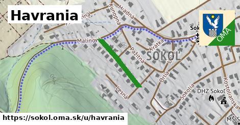 ilustrácia k Havrania, Sokoľ - 191m