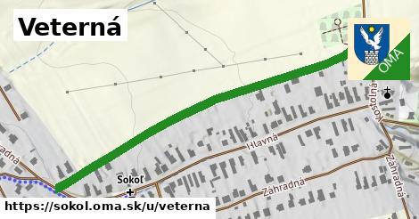 ilustrácia k Veterná, Sokoľ - 613m