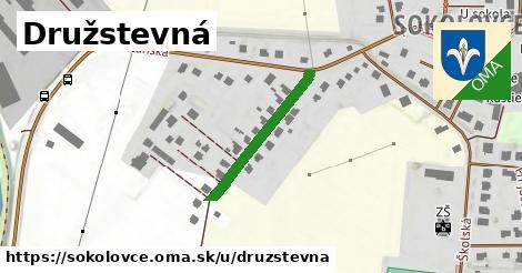 ilustrácia k Družstevná, Sokolovce - 238m