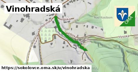 ilustrácia k Vinohradská, Sokolovce - 201m