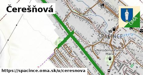 ilustrácia k Čerešňová, Špačince - 1,10km