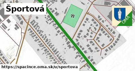 ilustrácia k Športová, Špačince - 558m