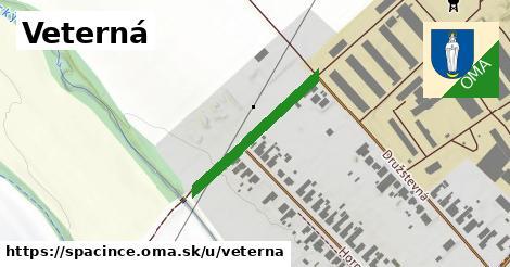 ilustrácia k Veterná, Špačince - 249m